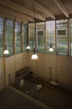 curral na holanda - Granja en almere - 70F architecture