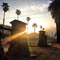 """Sunshine makes me happy. But I love it when it rains. #MyDayInLA #Latergram #LatePost from #LAMarathon2016 #CaliforniaDreaming #Palms to the left #QueenPalms to the right #iPhone6sOnly #ItsABeautifulDay #ItsTheLittleThings by gmdirecto Follow """"DIY iPhone 6/ 6S Cases/ Covers/ Sleeves"""" board on @cutephonecases http://ift.tt/1OCqEuZ to see more ways to add text add #Photography #Photographer #Photo #Photos #Picture #Pictures #Camera #Only #Pic #Pics to #iPhone6S Case/ Cover/ Sleeve"""