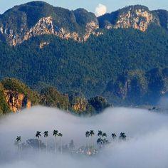Foggy-Morning-Vinales-Cuba