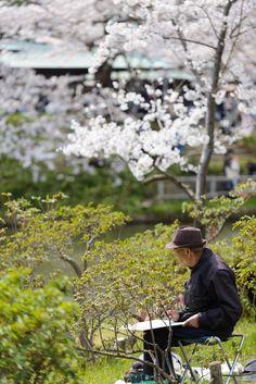 Photos of the Hanami in Yokohama