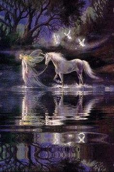Unicorn & Faires