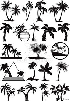 palm and coconut trees vector silhouette