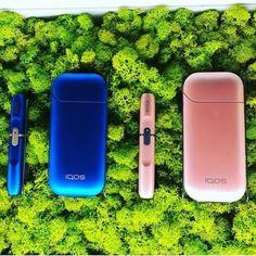 IQOS Sigara Isıtma Cihazı 2.4 Plus - Edition Pink - Limited Edition sigaratr.com (1) Bluetooth, Pink, Smoke, Pink Hair, Smoking, Roses, Acting