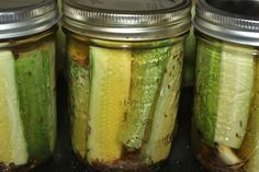 This Spicy Garlic Dill Pickle Recipe is a must this year! The terrific blend of dill, garlic, and a little splash of heat will have you begging for more! Making Dill Pickles, Garlic Dill Pickles, How To Make Pickles, Spicy Pickles, Pickled Garlic, Homemade Pickles, Pickles Recipe, Kosher Pickles, Crispy Dill Pickle Recipe