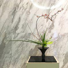 立花正風体 つるうめもどき、燕子花、オクロレウカ、ポトス Ikebana Flower Arrangement, Flower Arrangements, My Design, Floral Design, Bouquet, Table Set Up, Japanese Flowers, Origami, Glass Vase