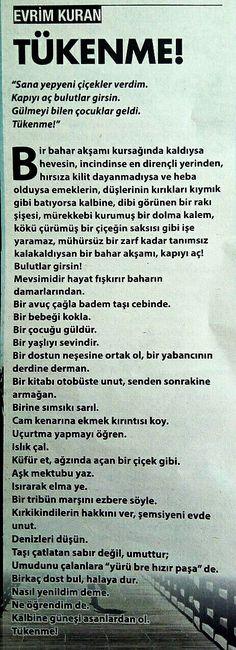 Evrim Kuran