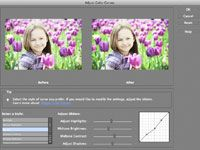 Using Curves in Photoshop Elements 10