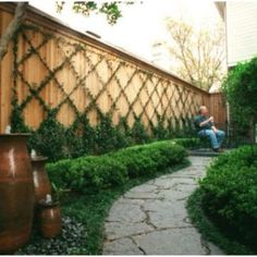 40 DIY Homemade Structures to Plant Vines: Trellis, Arbor, Pergola Vine Trellis, Garden Trellis, Trellis Ideas, Trellis On Fence, Privacy Trellis, Wall Trellis, Bamboo Trellis, Backyard Fences, Backyard Landscaping