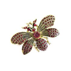 JEWELLED INSECT BROOCH Happy Shopping, Insects, Brooch, Buttons, Jewels, Rings, Stuff To Buy, Collection, Jewerly