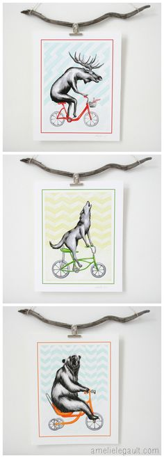 Biking animals series: moose, wolf and bear by Amelie Legault on Etsy Affiches, Animaux à vélo: orignal, loup et ours, par Amelie Legault sur Etsy $12.00 or 3 for $30.00, Click here to order your wolf, moose, and bear: https://www.etsy.com/ca/listing/193223788/print-bear-on-bike-bear-drawing-8-x-10?ref=shop_home_active_13 #bikinganimal #bear #wolf #moose #amelielegault #animauxavelo #orignal #loup #ours