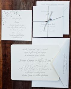 Sleek Silver Invitation - like the graphics, simple and pretty, dont like the calligraphy