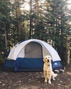 Would you like to go camping? If you would, you may be interested in turning your next camping adventure into a camping vacation. Camping vacations are fun Adventure Awaits, Adventure Travel, Trekking, Wild Campen, In Natura, Roadtrip, Go Camping, Outdoor Camping, Camping Hacks