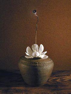 Lotus by Atsushi