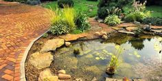 Garden water feature designs can increase the appeal of your home. See pictures of front & backyard water features including ponds, fountains and waterfalls Backyard Water Feature, Ponds Backyard, Fish Ponds, Pond Landscaping, Landscaping With Rocks, Natural Landscaping, Pond Design, Landscape Design, Water Features In The Garden