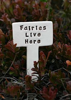 Fairies Live Here - Little Sign Marker Stake for Garden, Plant Pot or Terrarium - Custom Made to Order