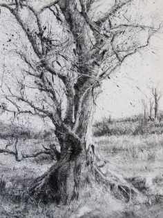 Michael Wann (charcoal and wash on canvas)