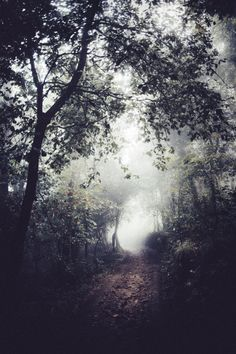 More nature photos at http://almightynature.tumblr.com