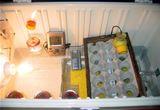 homemade egg incubators