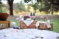 Adorable picnic theme theme @delightfully engaged @Perpixel Photography
