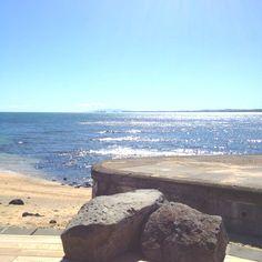 Milford, Auckland. Stunning coastal walk.
