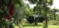 Shepherds Hut Bed and Breakfast - Ellesmere Shropshire