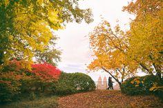 Missing autumn