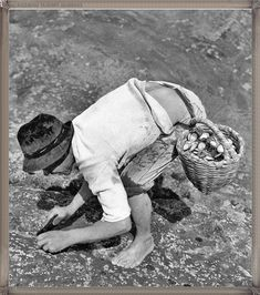Tenerife año 1960..... #fotoscanariasantigua #tenerifesenderos #fotosdelpasado #canariasantigua #canaryislands #islascanarias #blancoynegro #recuerdosdelpasado #fotosdelrecuerdo