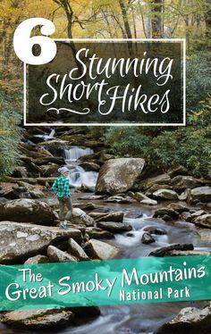 6 Stunning Short Hikes in the Smoky Mountains. Did you know that The Great Smoky Mountains are the most visited national park in the USA? Located near Gatlinburg, Tennessee in the Appalachian Mountains this spectacular national park offers well maintained Great Smoky Mountains, Smoky Mountains Hiking, Smoky Mountains Tennessee, Appalachian Mountains, Smoky Mountain Vacations, North Carolina Mountains, Appalachian Trail, Gatlinburg Vacation, Tennessee Vacation