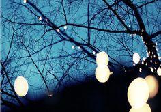 Designer cria lâmpada plantada em lama que precisa ser regada para funcionar
