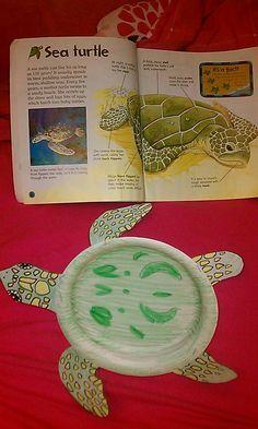 sea turtle life cycle interactive book | Sea turtle craft More