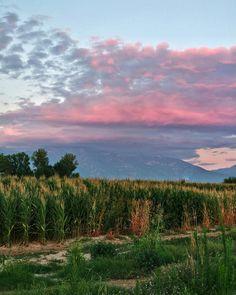 Все хватит! Хватит протирать пляжные лежаки. Пора заняться делом и навестить старину Зевса. Впереди 2900 метров вверх  камня и скал и имя им - Олимп. . . . . . #греция #hike #hiking #tramonto #салоники #pordosol #atardecer #greece #landscape #landscapes #cloud #clouds #athens #greece #cielo #sky #skyline #небо #sunrise #sunset #mountain #horizon #sonnenuntergang #coucherdesoleil #solnedgang #puestadesol #thessaloniki #mountains #minsk #минск