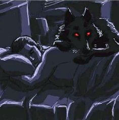 I am a nice Wolf, I watch your sleep ! Jackson Teen Wolf, Teen Wolf Derek Hale, Teen Wolf Dylan, Teen Wolf Fan Art, Teen Wolf Ships, Furry Wolf, Furry Art, Teen Series, Sterek Fanart