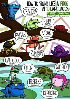 """frog language, I've always wondered if other languages had different """"sounds"""" for animals."""