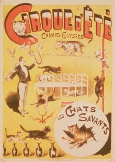 99 Best Vintage Advertising Cats and Rabbits images ...