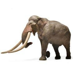 New 2010 ELEPHANT BESWICK Ceramic African Babies