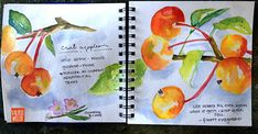 CRABAPPLES | watercolor sketching in my Stillman & Birn sket… | Flickr Watercolor Sketch, Floral Watercolor, Watercolor Journal, Book Journal, Journal Ideas, Travel Kits, Art Sketchbook, Colorful Pictures, Food Art