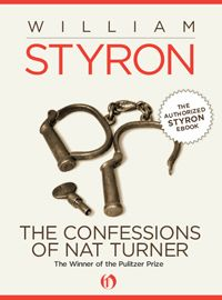 Styron, a white, Southern author, wrote from the point of view of the leader of an infamous American slave rebellion. The Pulitzer Prize committee loved it, but it was challenged in some schools, and some activists burned the novel.