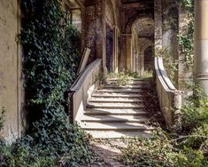 My very first experience with fantastical architecture had to be from fairy tales. I used to get lost in the illustrations rather than the stories themselves. Fairy tales illustrations must have … Chronicles Of Narnia, Abandoned Places, Faeries, Garden Bridge, Fairy Tales, Beautiful Places, Scenery, Exterior, Plants
