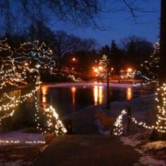 Mirror Lake in January!  Ohio State University :)