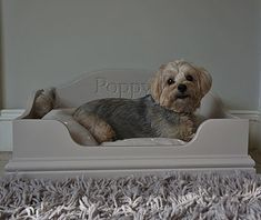 personalised dog bed by chatsworth cabinets | notonthehighstreet.com