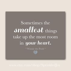 Sometimes The Smallest Things Take Up The Most Room In Your Heart -
