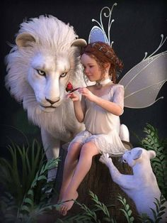 White Lion, cub and Fairy Beautiful Fantasy Art, Beautiful Fairies, Magical Creatures, Fantasy Creatures, Fairy Wallpaper, Fairy Pictures, Love Fairy, Fairy Art, Fantasy Artwork