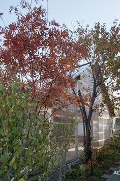 Gallery - House in Shinkawa / Yoshichika Takagi - 9