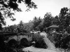 Antigua Carretera San Juan-Caguas,año 1908,Puerto Rico.