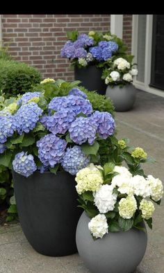 easy and affordable DIY garden pots you've never thought of Architecture designSpring is here, why don't you go out and do something nice for your garden? Make unique DIY garden pots for your plants Diy Garden, Garden Planters, Garden Projects, Balcony Gardening, Garden Ideas Pot Plants, Front Yard Planters, Front Porch Flowers, Potted Garden, Porch Garden