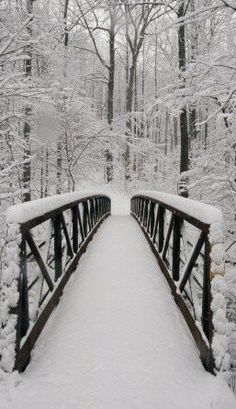 I think I have been on this bridge out of Gaitlinburg, TN in The Smoky Mountains on a day just like this!