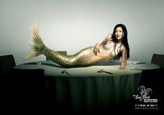 The W's: Mermaids