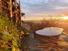 Weinloft III #hottub #weltevree #tinyhouse #bathtub #sunrise Tiny House, Sunrise, Bathtub, Hot, Outdoor Decor, Home Decor, Modern Cottage, Standing Bath, Bathtubs