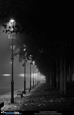 S-T by Dinis Ponteira