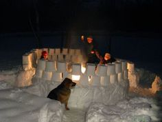 Cool snow forts